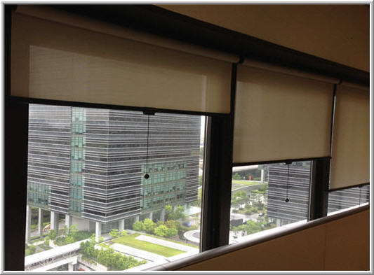 Window Shades for Privacy
